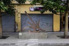 Arbusto Cañonero